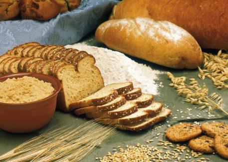 barley-production